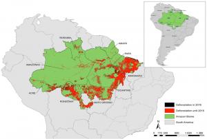 Mapa da Amazônia Brasileira. Foto: IPAM Amazônia
